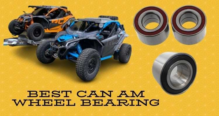 Best Can Am Wheel Bearing